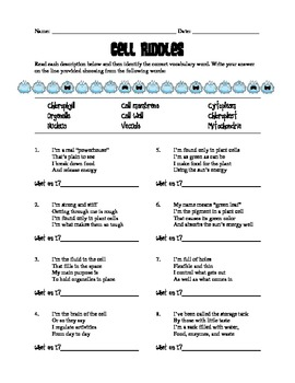 FREE - CELLS Organelle Riddles/Clues - Vocabulary Review Activity