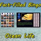 Fact-Filled Bingo - Ocean Life