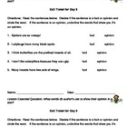 Fact and Opinion Exit ticket