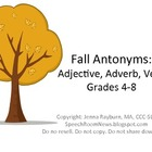 Fall Antonyms: Intermediate Speech Therapy