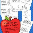 FREEBIE! Sight word Reader - What will you learn in PreK or UPK!