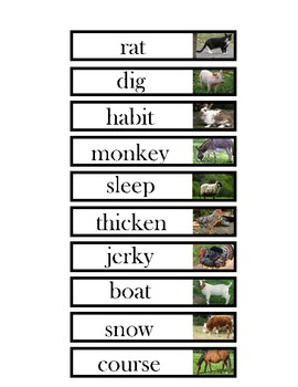 Farm Animals - Final Consonants - Rhyming Words - Set #2