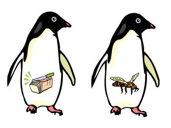 Feed the Penguin - A Winter rhyming game