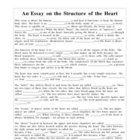 Fill in the Blank Essay about Heart Structure