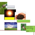 Fill in Companion for How Plants Grow and Change Powerpoint