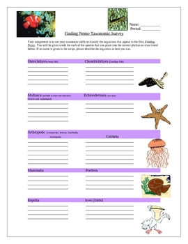 Finding Nemo Movie Fun Activity