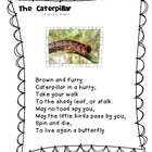 "First Language Lessons ""The Caterpillar"" Poetry Notebook"