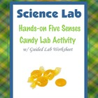 Five Senses Candy Lab ~ Blackline Master