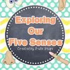 Five Senses Mini- Unit
