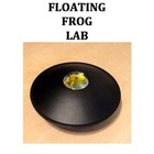 Floating Frog Lesson Plan