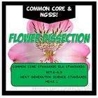 Flower Dissection Lab Activity FUN