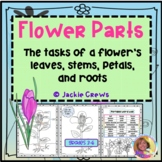 Flower Parts and Activities for Centers
