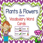 Flower Plant Word Cards for Non-fiction Word Wall, or Writ