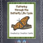 Fluttering Through the Butterfly Life Cycle