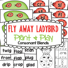 Fly Away Ladybird - Game / Center for Consonant Blends
