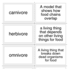 Food Chain Printable Flashcards