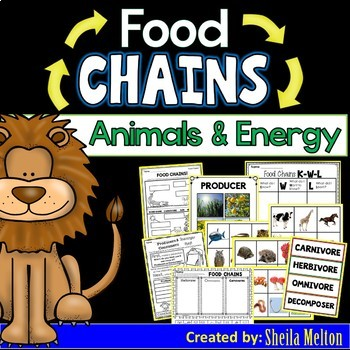 Food Chains, Animals and Energy (Real pictures to sort and