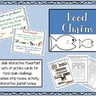 Food Chains PowerPoint Elementary Science