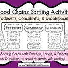 Food Chains Sorting Activity Game about Producers, Consume