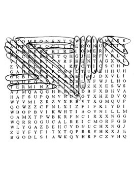 Forces in Motion Wordsearch Puzzle with Key