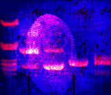 Forensic Art: DNA Banding over Fingerprint over Blood Spatter