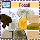 Fossil clip art