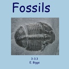 Fossils - Smartboard Lesson