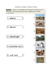 Fossils and Dinosaur Assessment - Grade 2 PDF
