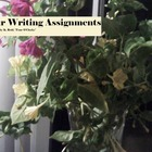 Four Writing Assignments