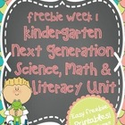 Kindergarten Next Generation Science, Math & Literacy FREEBIE