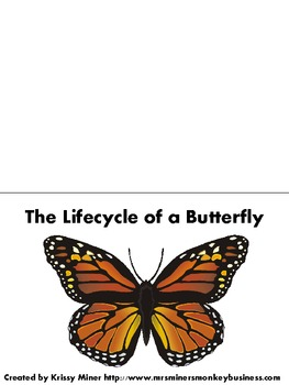 Free Invent an Insect Project and Butterfly LifeCycle Project