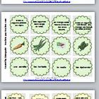 French 60 Fruit and Vegetable Trio Task/Game Cards