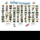 French Animal Vocabulary Speaking/Writing  Activity (Naufrage)