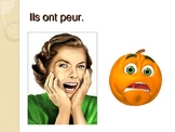 French avoir and faire expressions