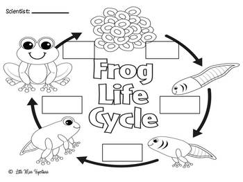 Frog Freebies!