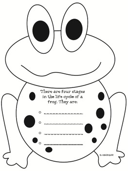 Frog Life Cycle Fun