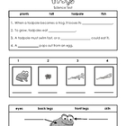 Frog Science Test