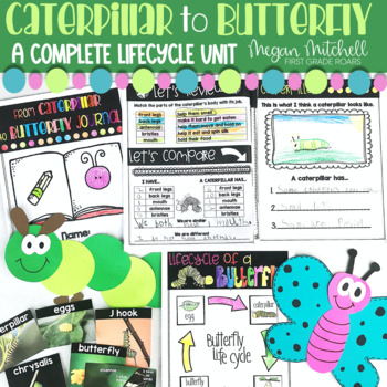 From Caterpillar to Butterflies