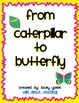From Caterpillar to Butterfly!