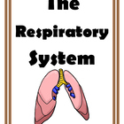 Games and Activities for the Respiratory System