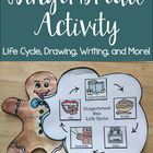 Gingerbread Activity: Life Cycle and How To Writing Prompt