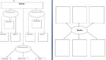 Graphic Organizer for Julius Caesar (Shakespeare)