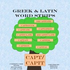 Greek and Latin Word Strips: capt/capit