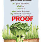 Green Leaf Lettuce Poster - Available in English and Spanish!