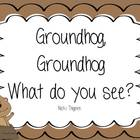 Groundhog--What do you see? Explanation of what happens on