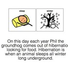 Groundhog&#039;s Day Adaptive Book- Phil the Groundhog austism-lang tx
