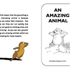 Groundhogs - Short Elementary Reader Booklet