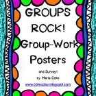 Group Work Posters and Survey!