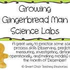 Growing Gingerbread Man Science Process Skills Labs