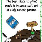 Growing My Garden - a book and activities with facts and opinions